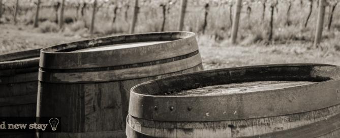 Destination Vineyard